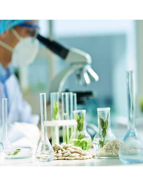 Biotecnología (Bacterias)